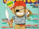ヤングマガジン海賊版